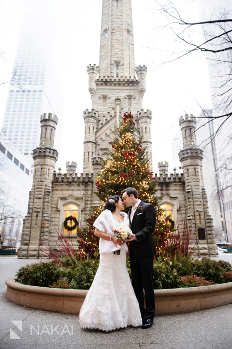 Chicago Winter Wedding Pictures