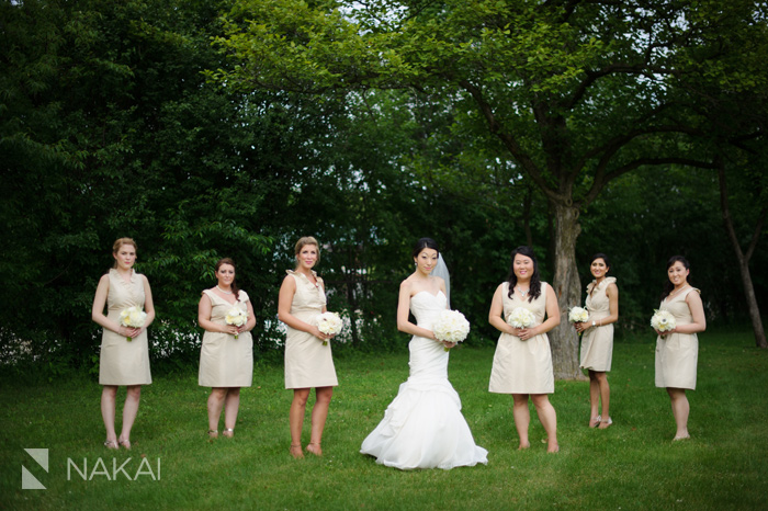 chicago suburban wedding photo
