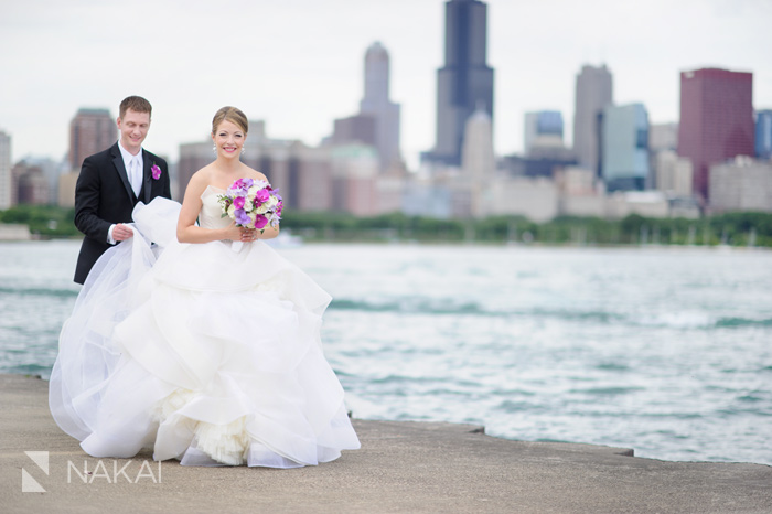 chicago skyline adler lake wedding photo