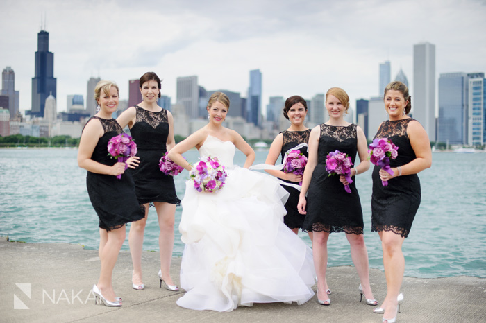 chicago skyline adler lake wedding picture