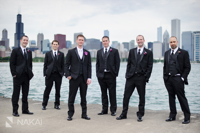 adler chicago skyline lake wedding picture