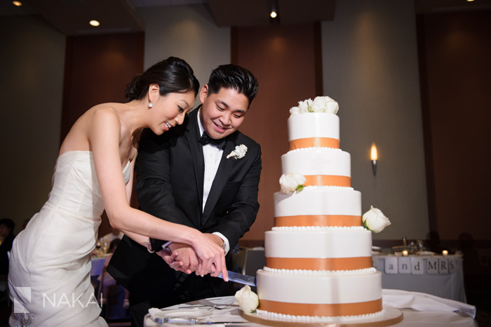 westin chicago north shore wedding reception photographer