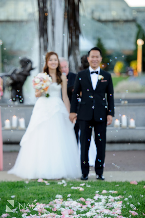 lincoln park wedding photographer