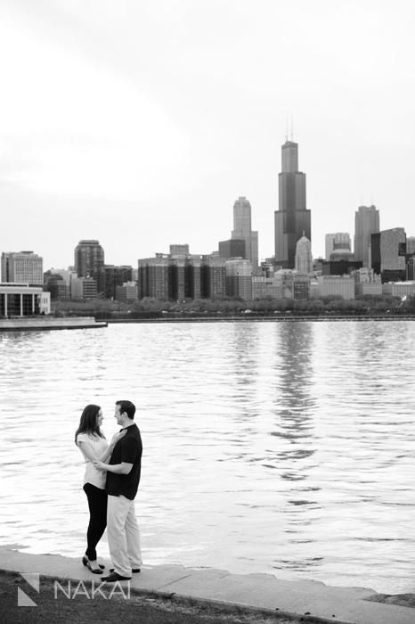 adler planetarium skyline chicago engagement picture