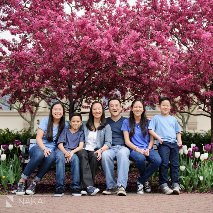 naperville family photographer photos