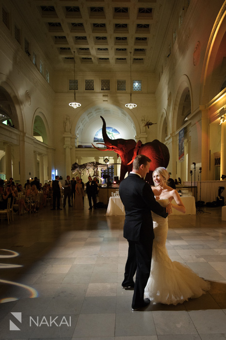 field museum wedding reception pictures