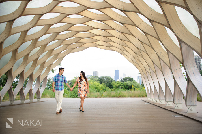 chicago engagement photo honeycomb