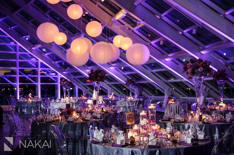 adler planetarium wedding photos photographer reception