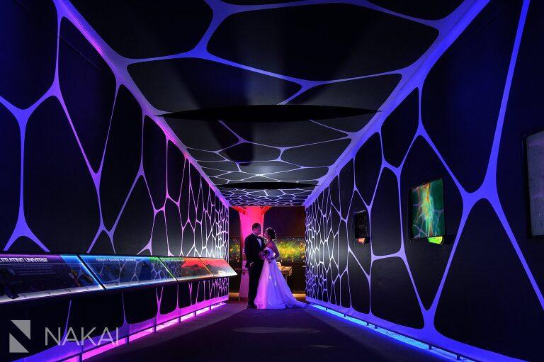 adler planetarium wedding photographer