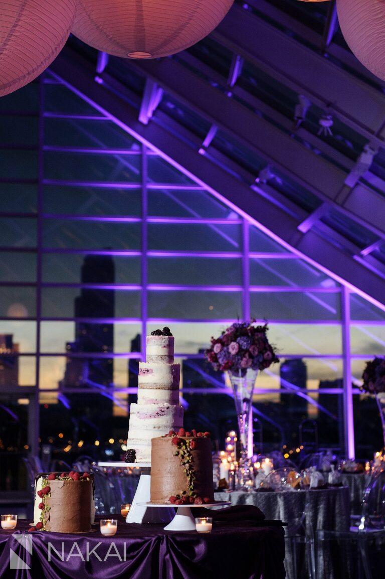 adler planetarium wedding photos