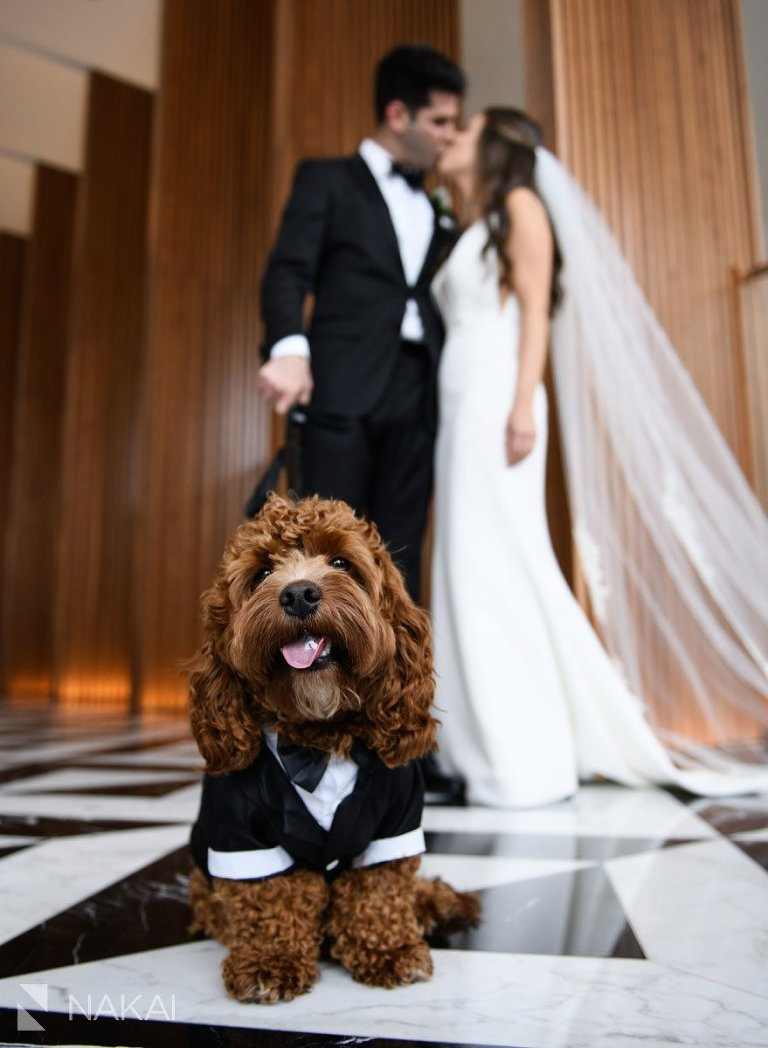 best ritz Carlton chicago wedding photo bride groom kiss dog