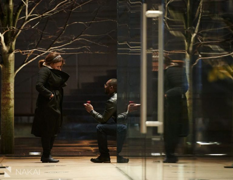 chicago winter proposal photographer bended knee picture